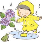 間違い探し(雨合羽を着た子供とあじさい)のイラスト(正)