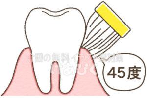 歯ブラシを歯にあてる角度のイラスト