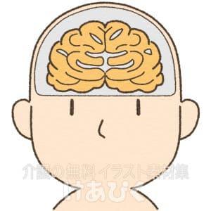 萎縮した脳のイラスト