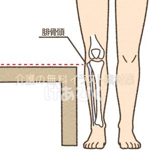 腓骨頭と座面の高さを合わせているイラスト