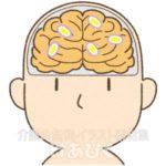 レビー小体が蓄積している脳のイラスト
